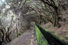 Levada-Wanderweg